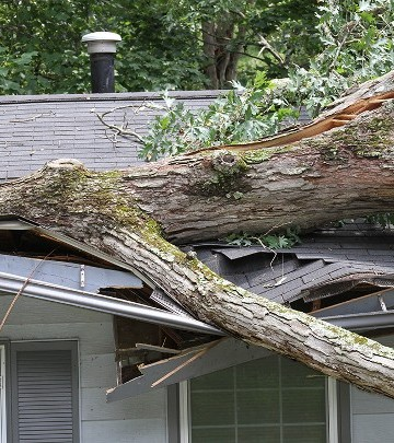 Storm Damage in St. Louis, MO
